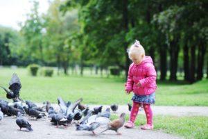 Gamtos fotografo M. Čepulio patarimai tėvams, kaip išmokyti vaiką mylėti ne tik gulbes, bet ir vorus