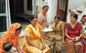 Indų šeima