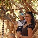 Draugaujam su lemūrais Tenerifės beždžionių parke