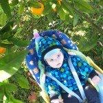 5 mėnesių Emilis po apelsinų medžiu.jpg