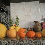 Kipre-soduose-noksta-apelsinai-mandarinai-pamelos-citrinos-ir-daugybė-vaisių-mums-net-nežinomais-pavadinimais
