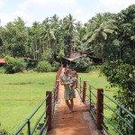 Pasivaikščiojimas Goa prieskonių plantacijoje