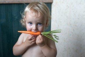 Sąkandį išgydys morka