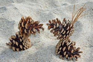 Darbeliai iš akmenukų, kankorėžių, smėlio