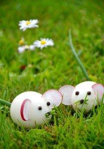 Kiaušiniai pelytės