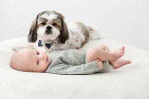 Trys auksinės taisyklės, jei namuose kūdikis ir keturkojis augintinis