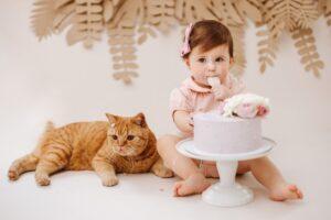 Reikės išmonės ir atidumo, kad katė susidraugautų su nauju šeimos nariu – kūdikiu