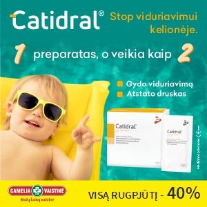catidral